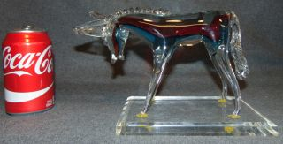 """Murano Style Glass Donkey  Murano Style Glass Donkey on a Lucite Base. Measures 7"""" tall x 10"""" wide x 5"""" deep. Overall condition is Excellent. No Damage. Several Shipping Options Available. Starting Bid $80. Auction Estimate $100 - $120."""